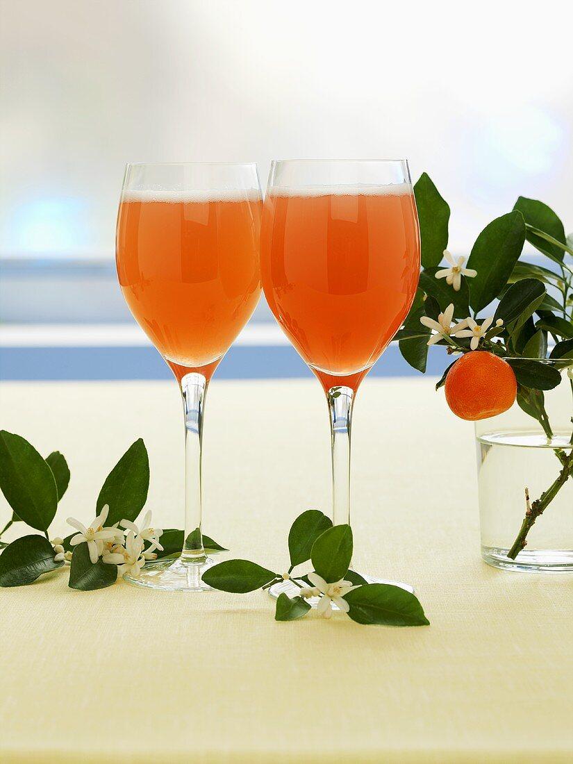 Orange blossom & rhubarb schorle (juice & carbonated water)