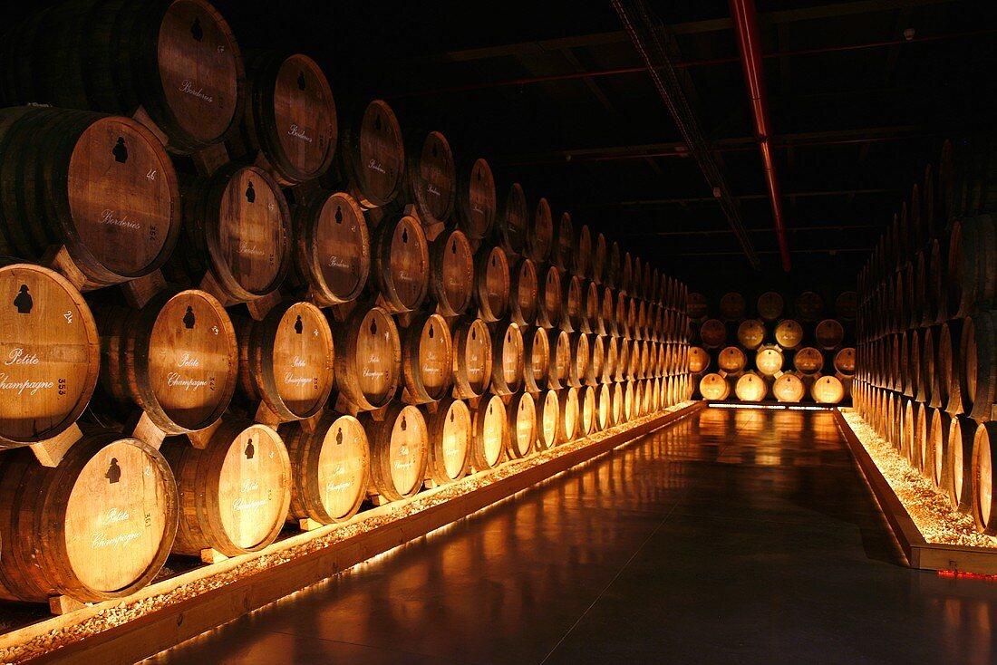 Courvoisier barrel cellar, Jarnac, France