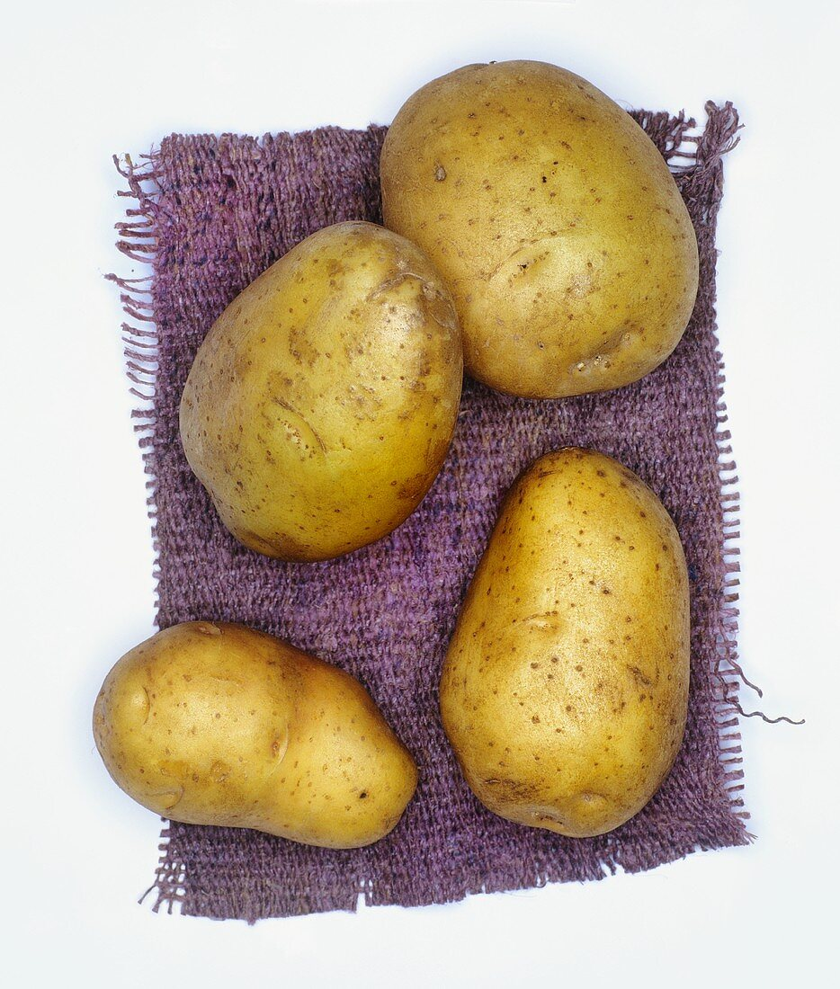 Potatoes, variety: Hela