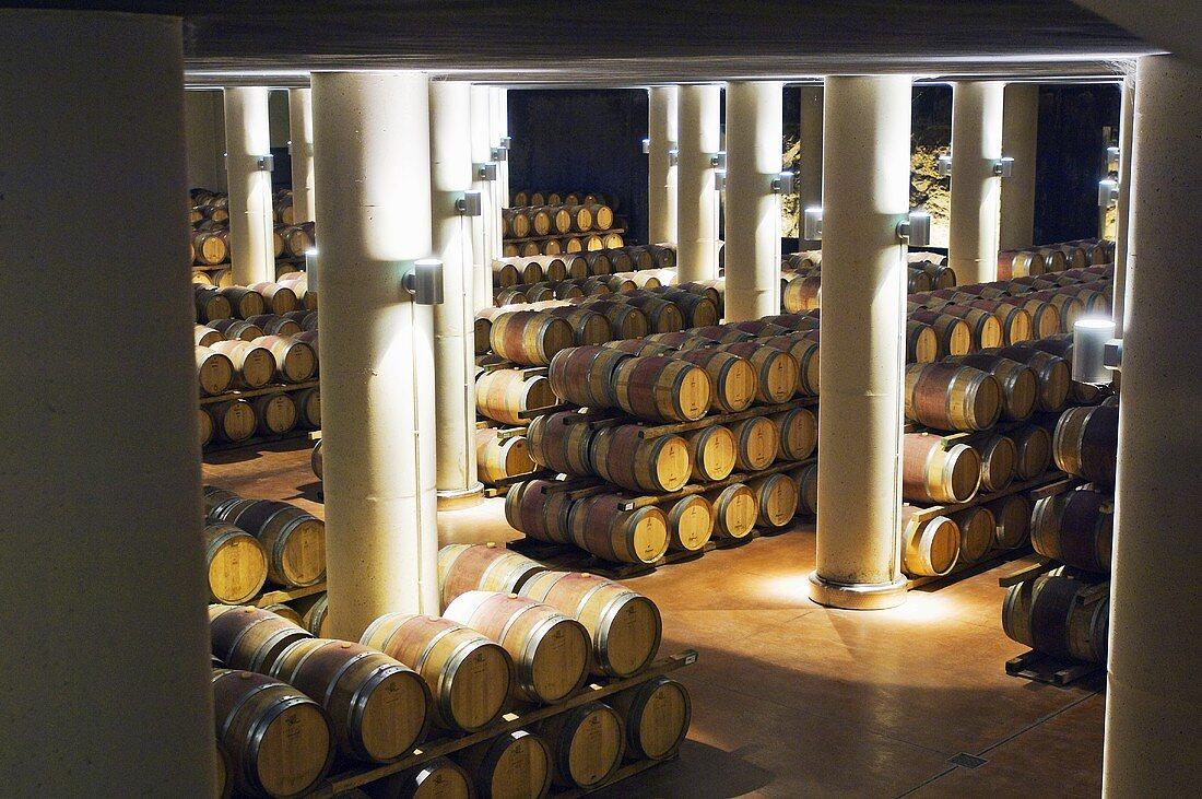 New barrique cellar, Fonterutoli Estate, Chianti, Tuscany, Italy
