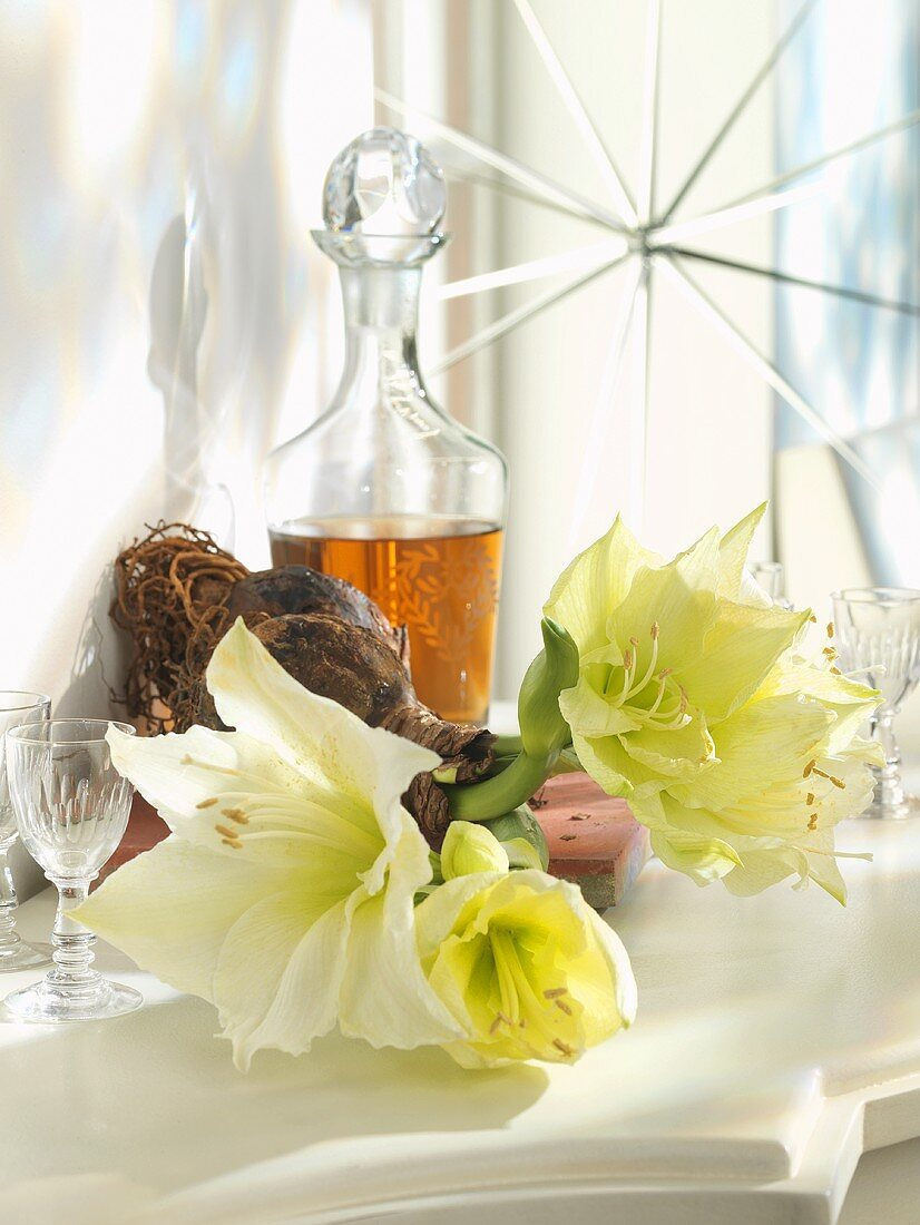 White amaryllis, sherry in crystal decanter
