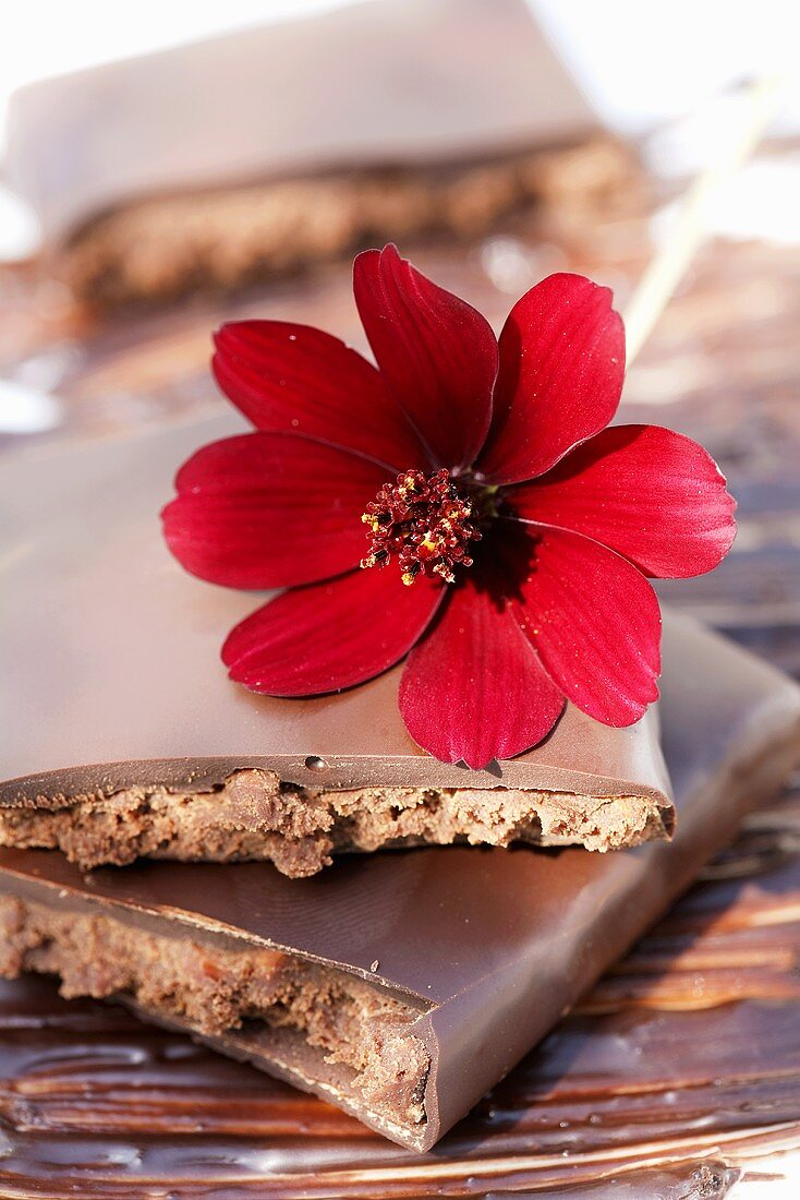 Chocolate with a chocolate flower