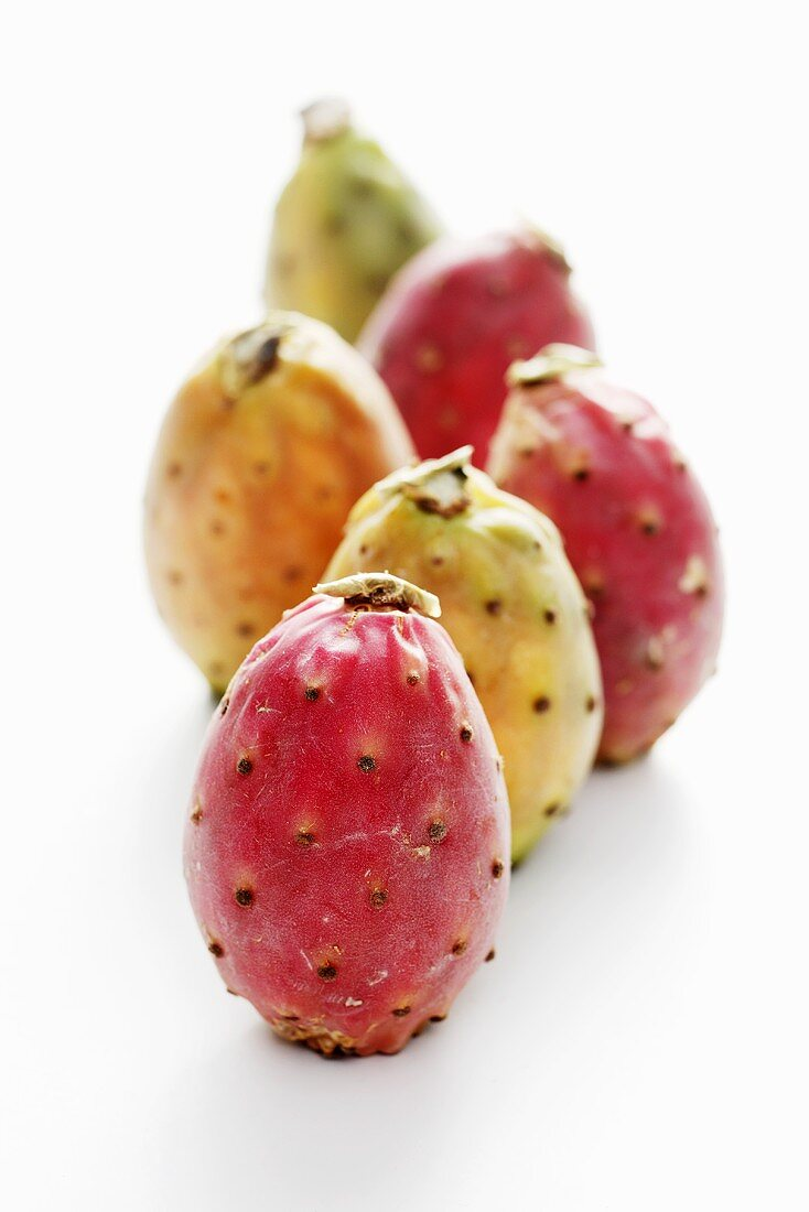 Several prickly pears