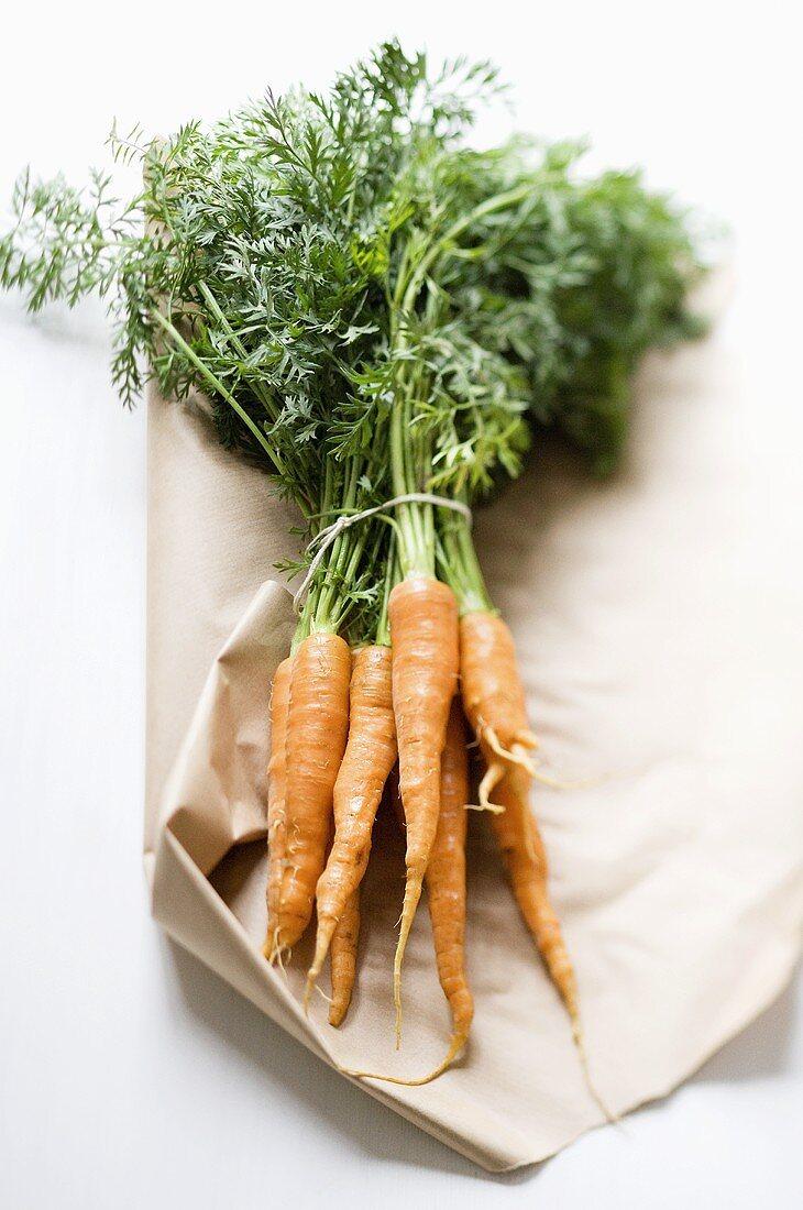 A bunch of fresh organic carrots