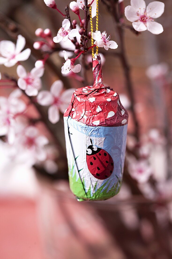 A lucky chocolate charm hanging on a flowering almond sprig