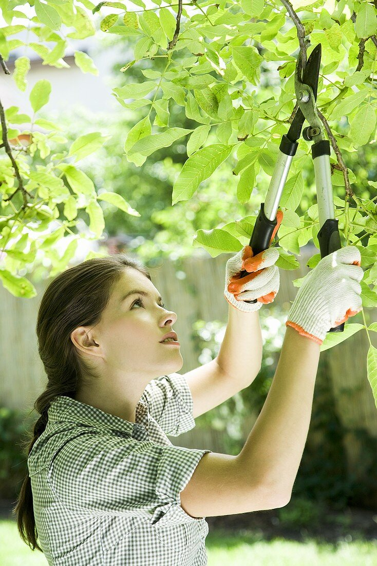 A young woman pruning a tree