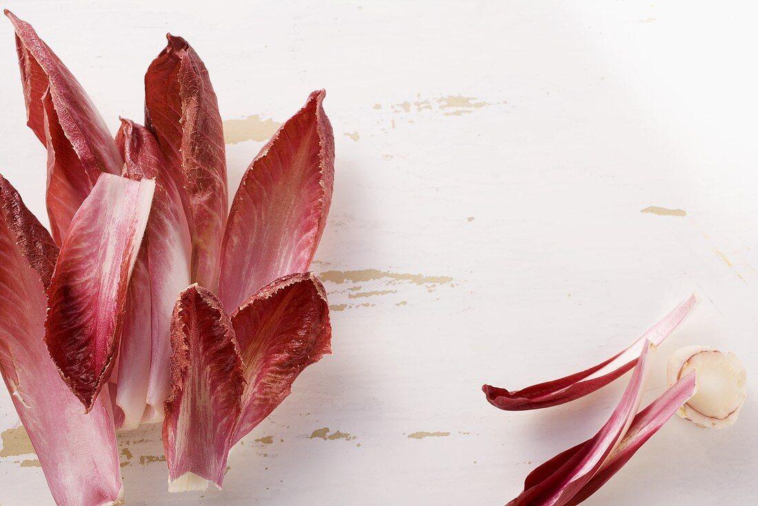 Radicchio leaves