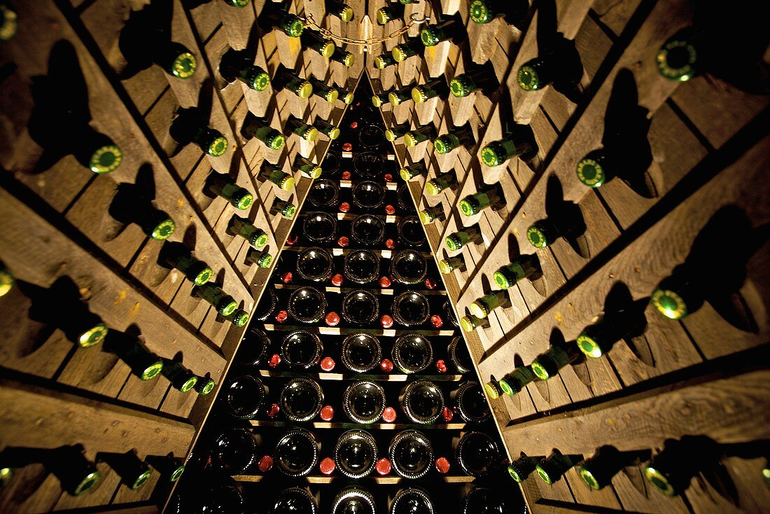 Bottles of Spumante in A-racks (Winery Ferrari, Ravina, Trentino, Italy)