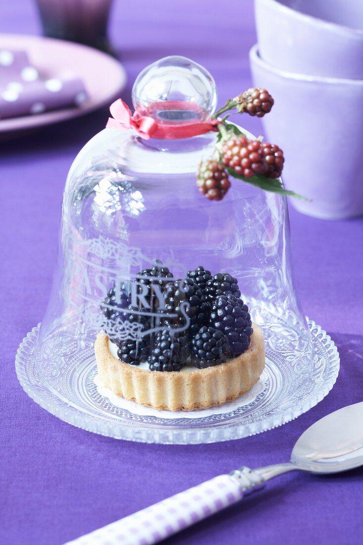 Blackberry tartlet under a cloche