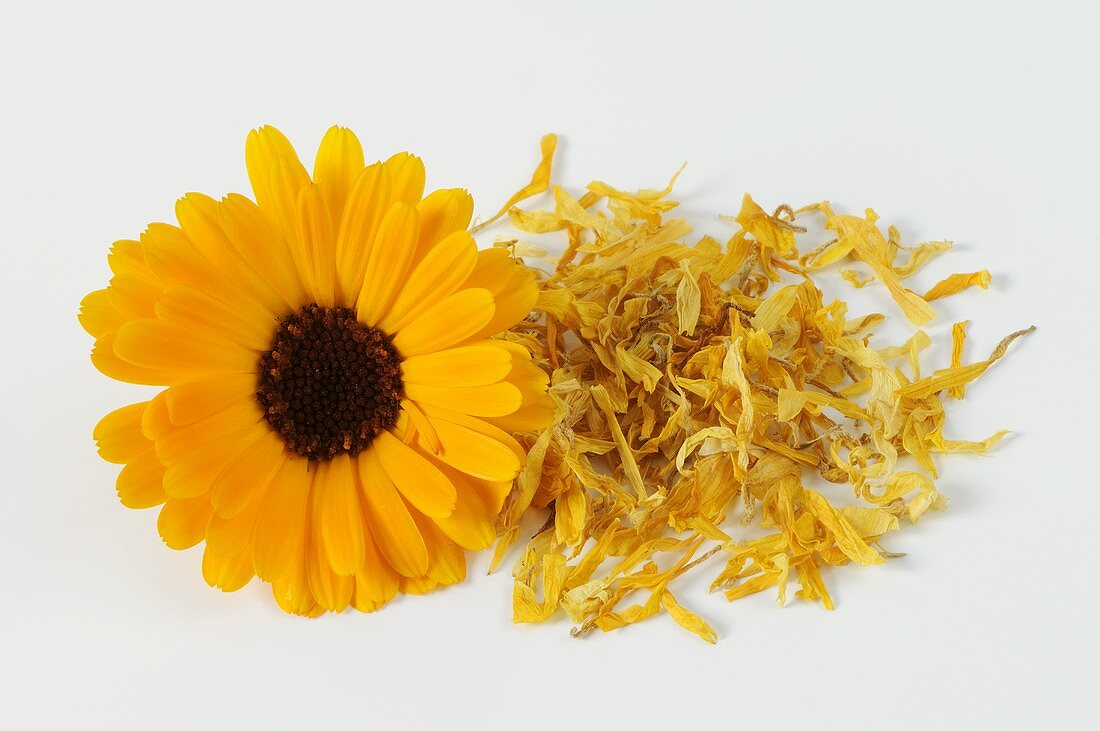A fresh marigold flower and dried petals
