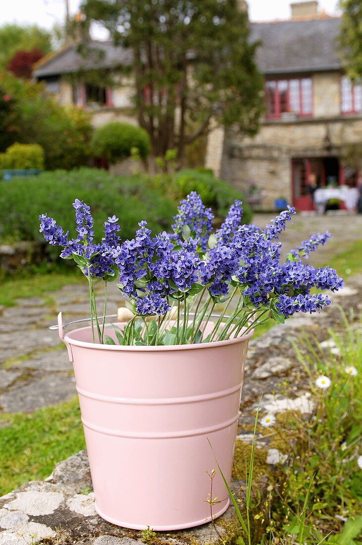 Flowers in pink bucket