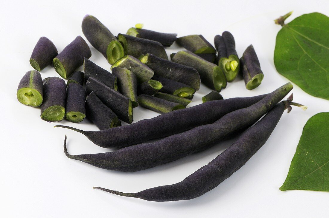Purple French beans (variety Purple Teepee) with leaf