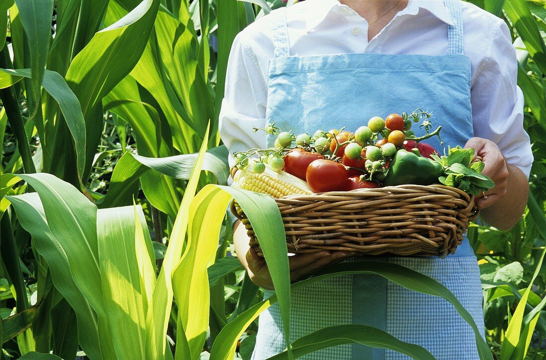 Young woman holding basket of fresh vegetables from the garden