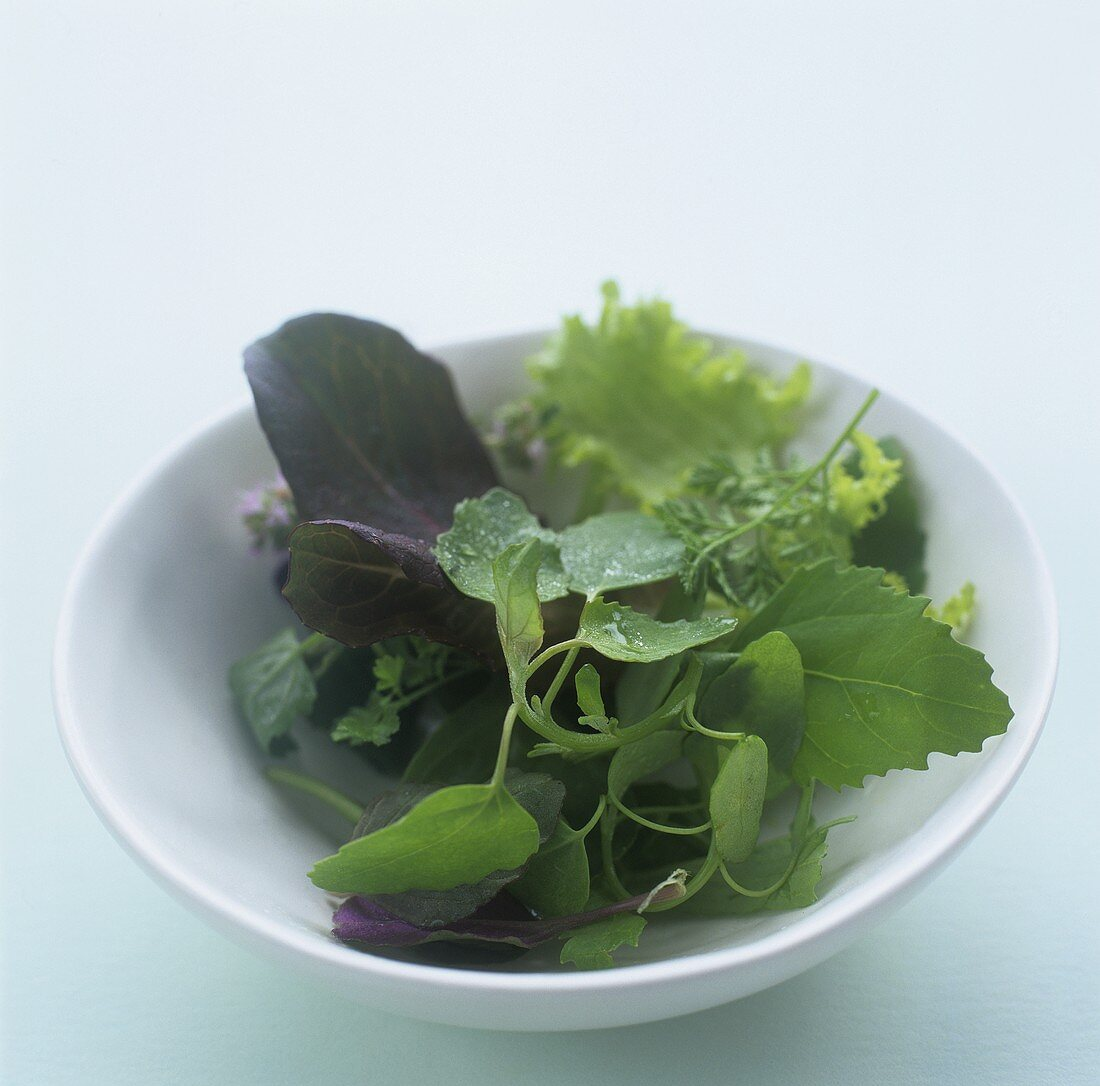 Baby greens in a bowl