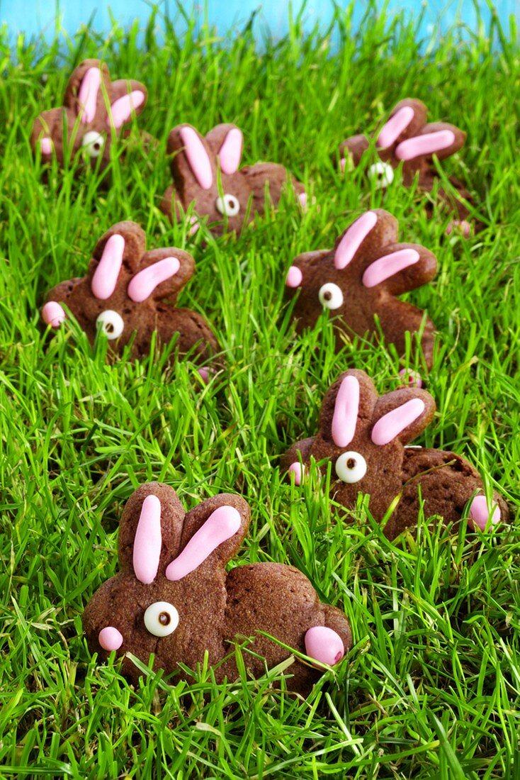 Sponge Easter Bunnies in grass