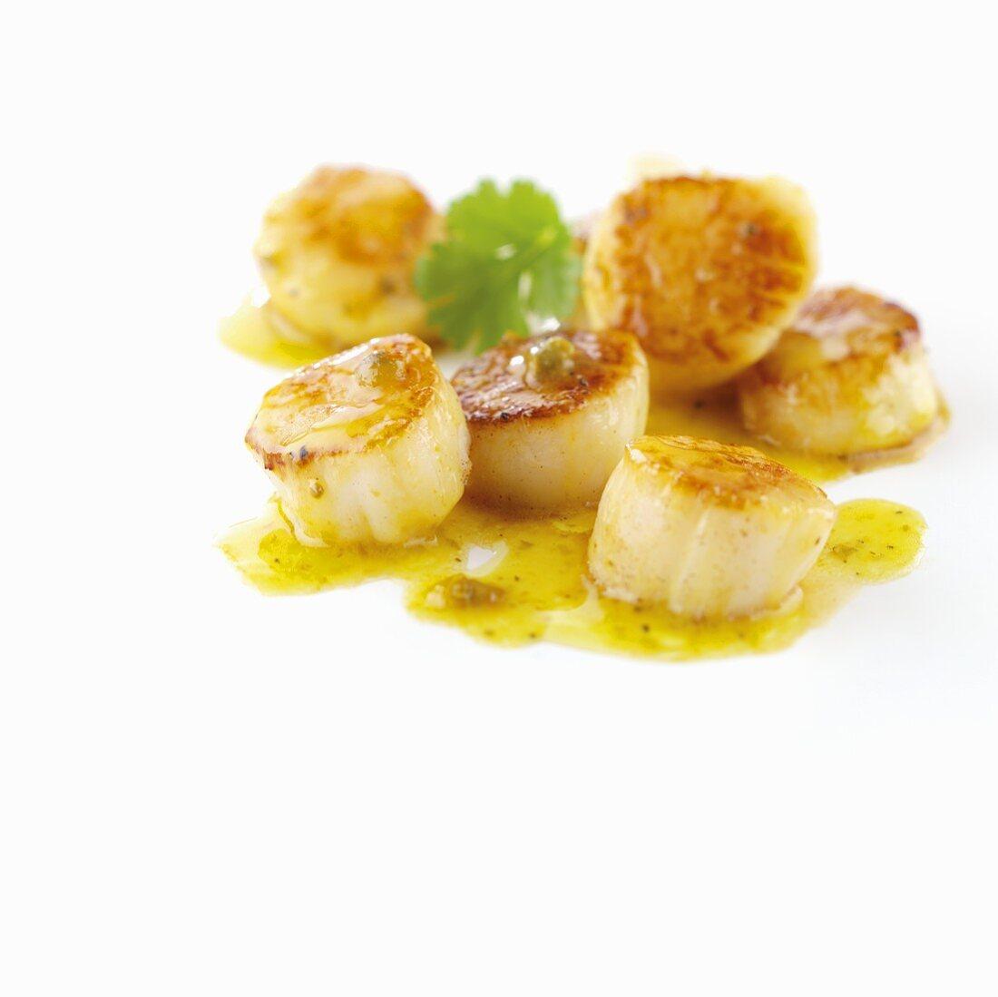 Fried scallops on saffron sauce