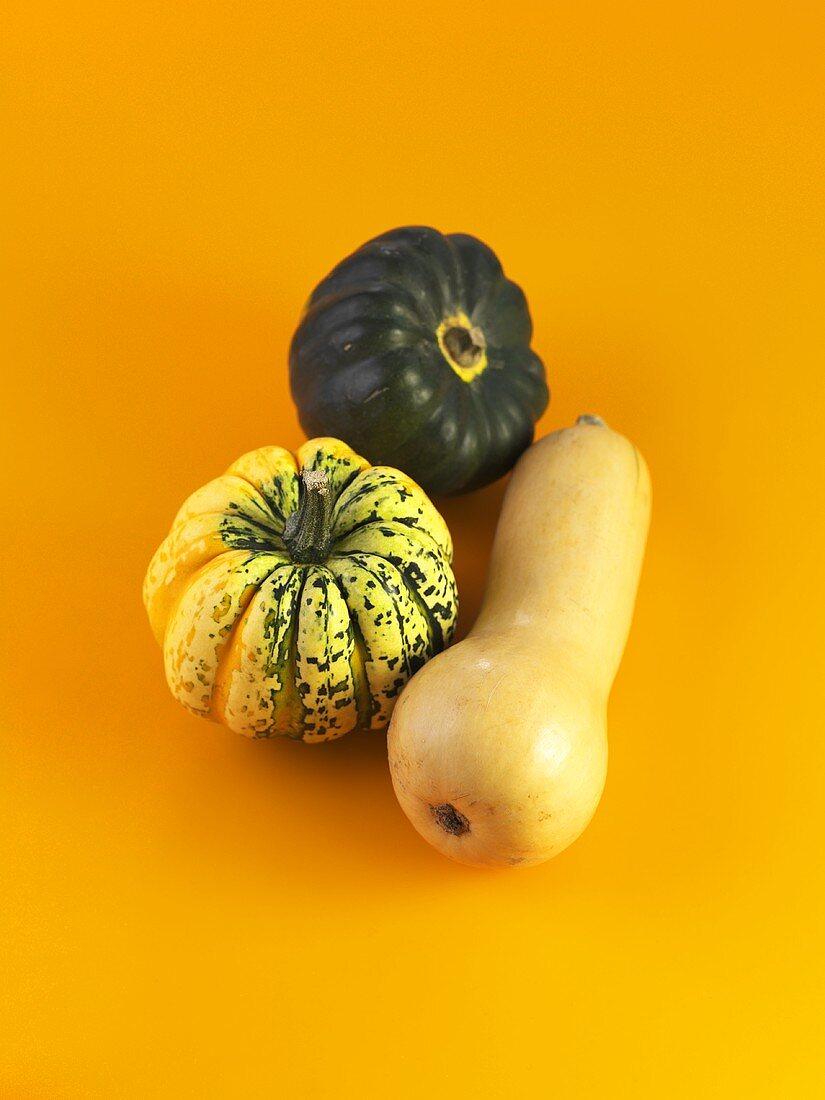 Carnival squash, acorn squash and butternut squash