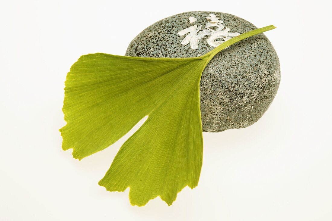 Ginkgo leaf and Japanese stone (symbol of wellness)