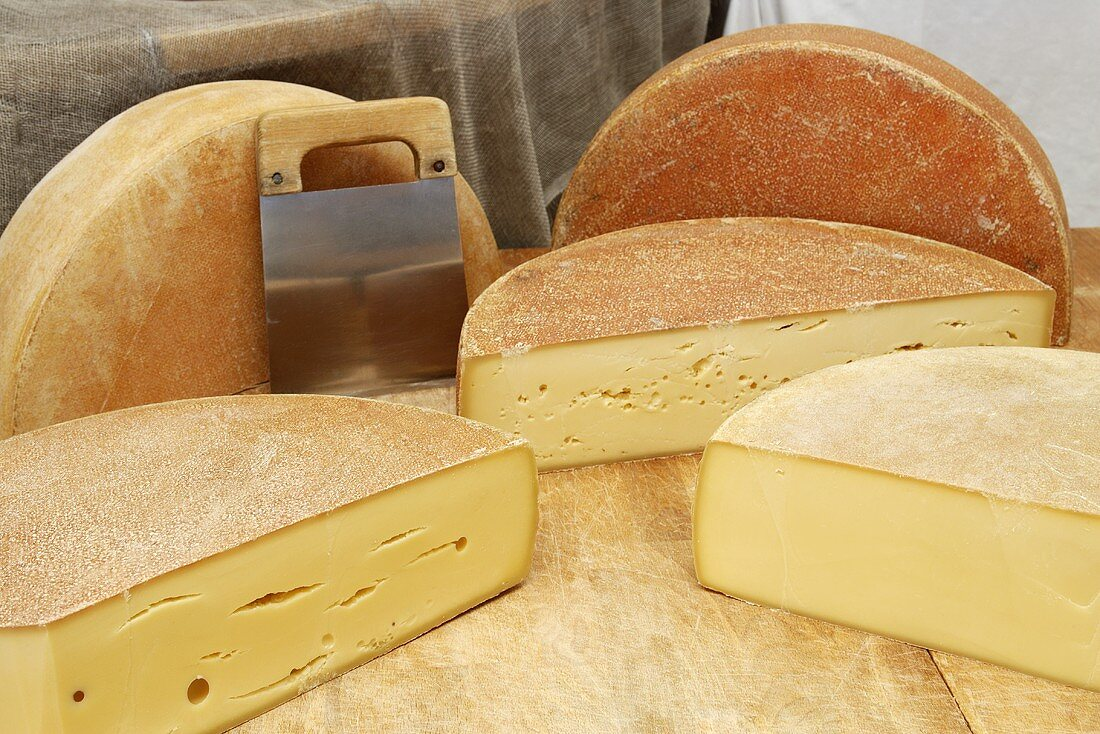 Halved Bergkäse cheeses (Alpine cheeses)