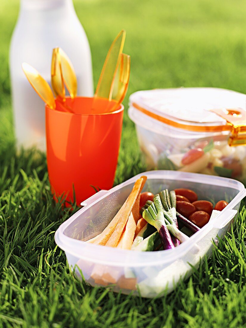 Raw vegetables in Tupperware container for a picnic