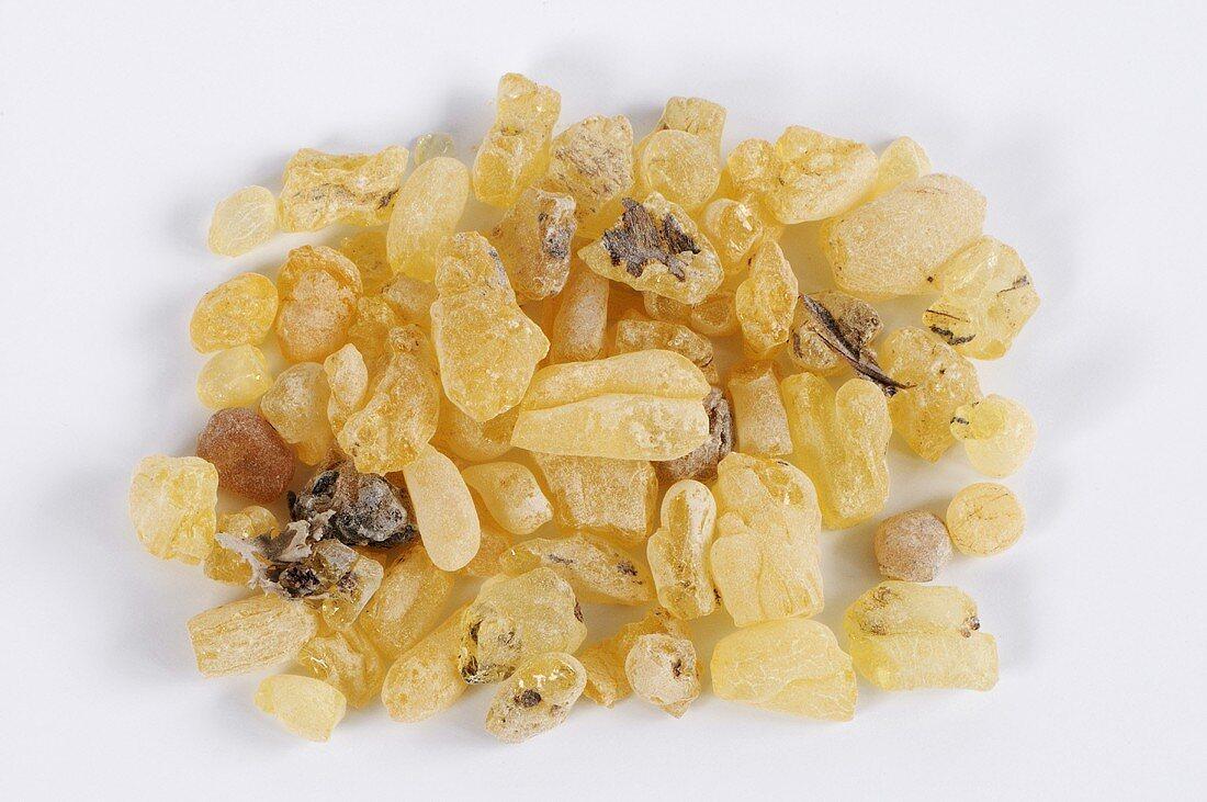 Sandarac resin (Tetraclinis articulata, Barbary thuja)