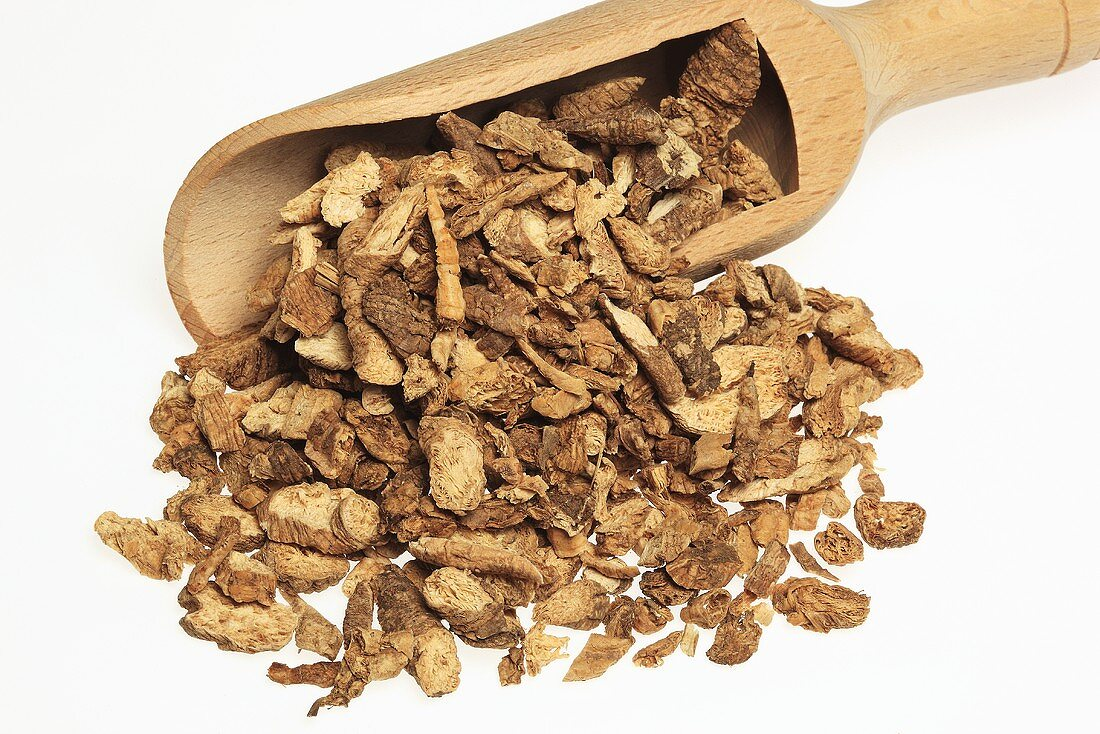 Dried ladybell root (Adenophorae radix, Na sha shen)