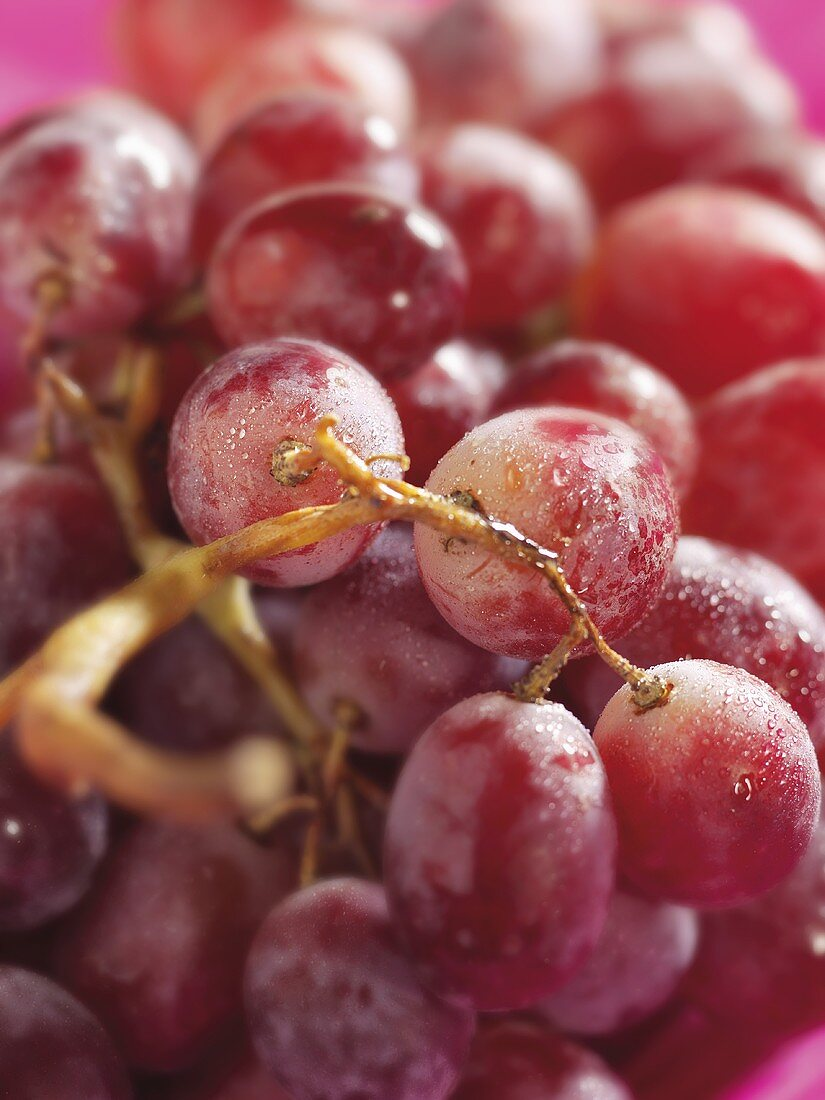 Rosé grapes with drops of water (close-up)