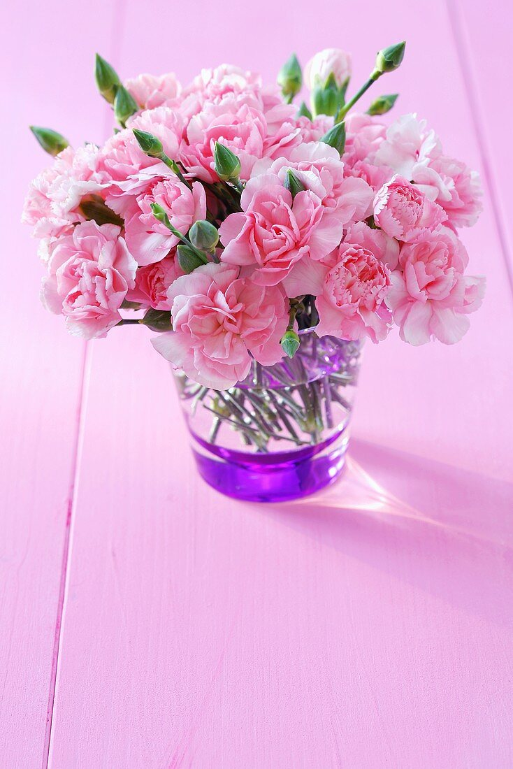 A vase of pinks