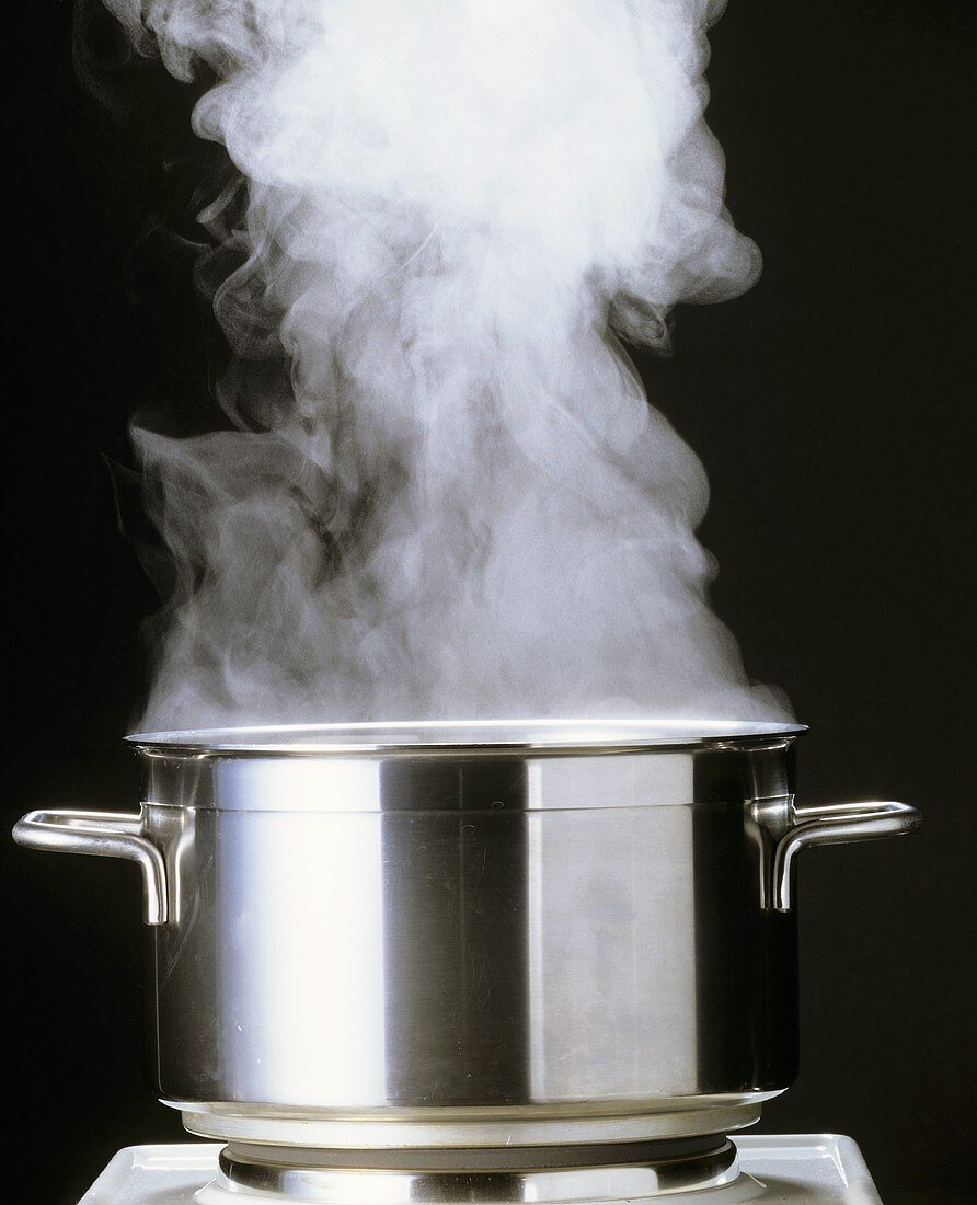 A Steaming Pot with the Lid Off