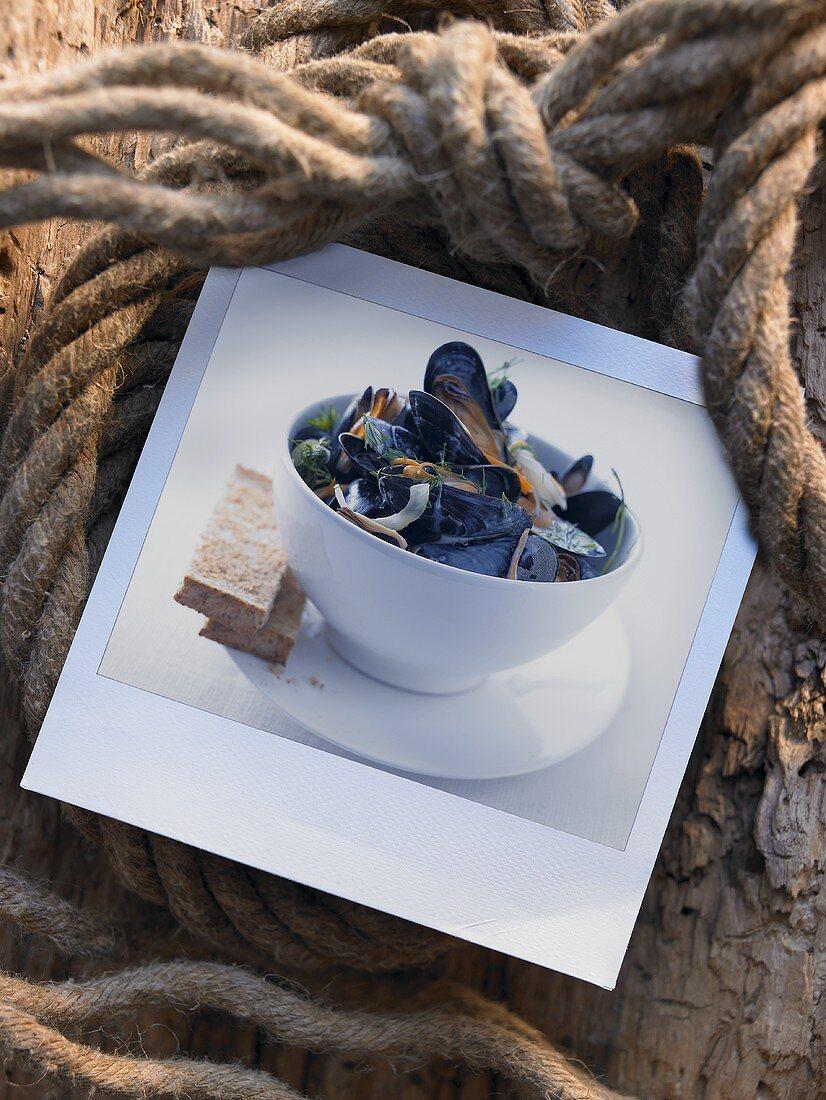 Mussels in aquavit and onion broth (Scandinavia)