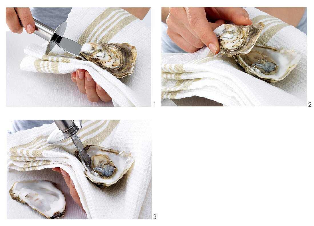 Opening oysters and releasing the flesh
