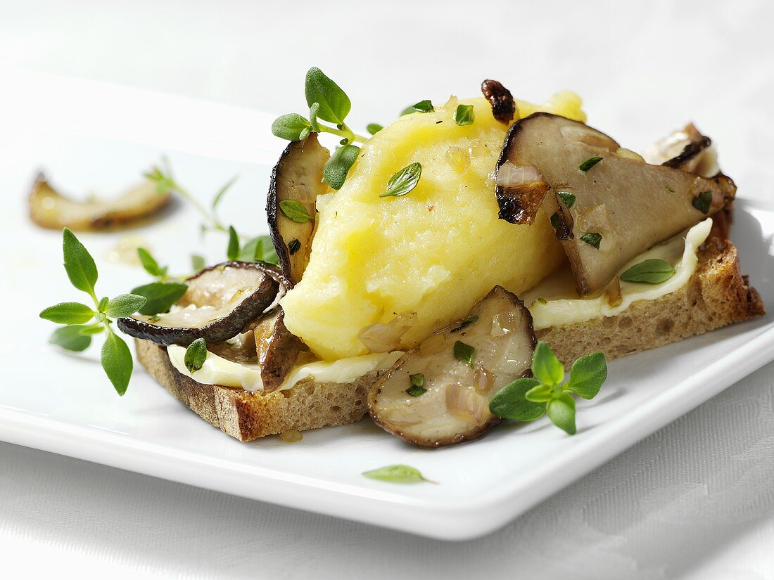 Mashed potato, fresh ceps and thyme on brown bread