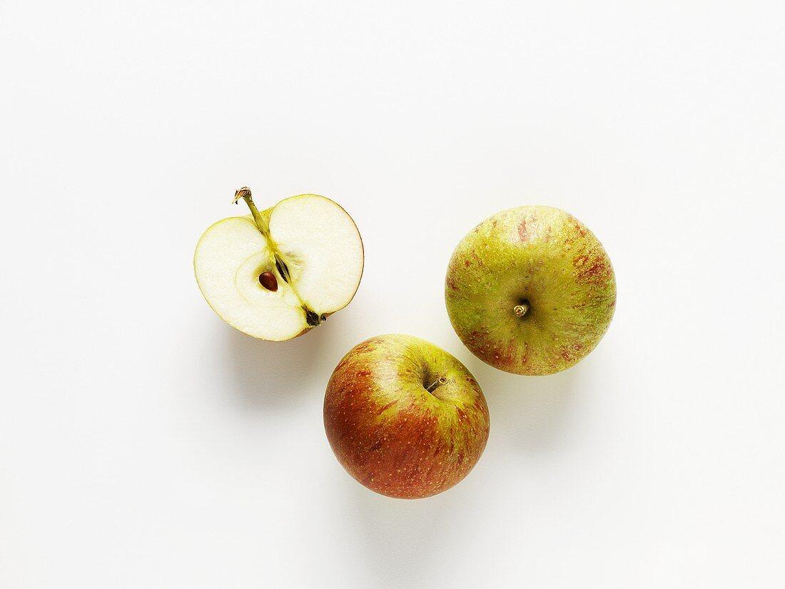 Apples (variety: Cox's Orange Pippin)