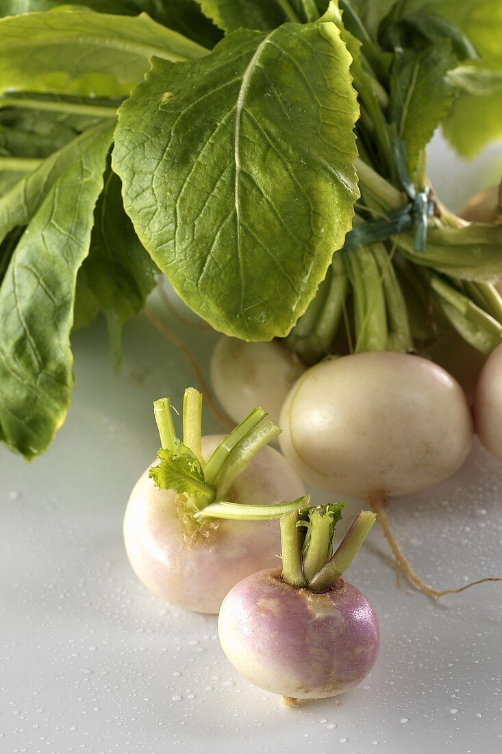 A bunch of turnips