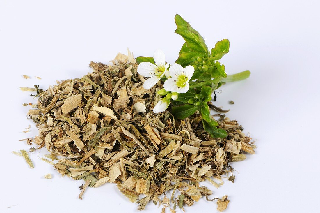 Watercress, dried (Nasturtium officinale)