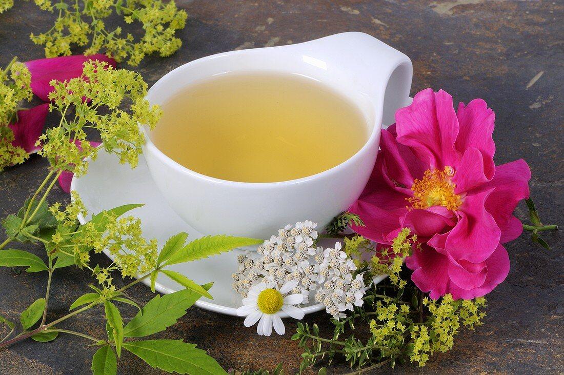 Tea made with women's herbs, fresh herbs