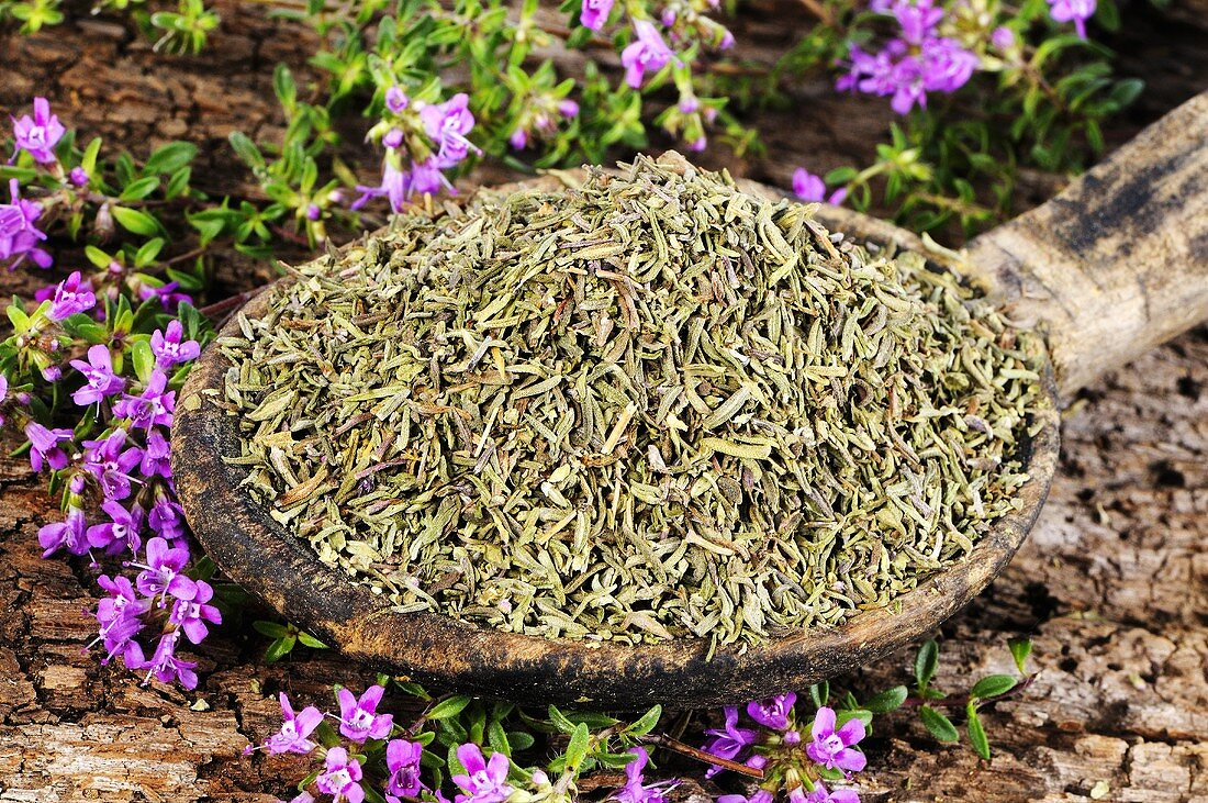 Thyme (fresh and dried)
