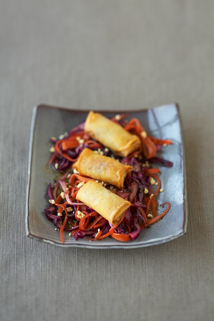 Spring rolls with mince filling on carrot and cabbage salad