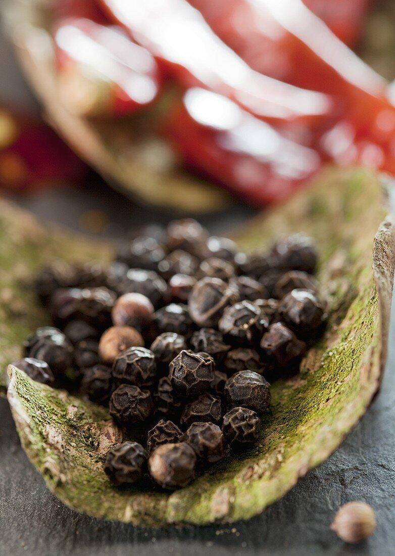Black peppercorns on tree bark