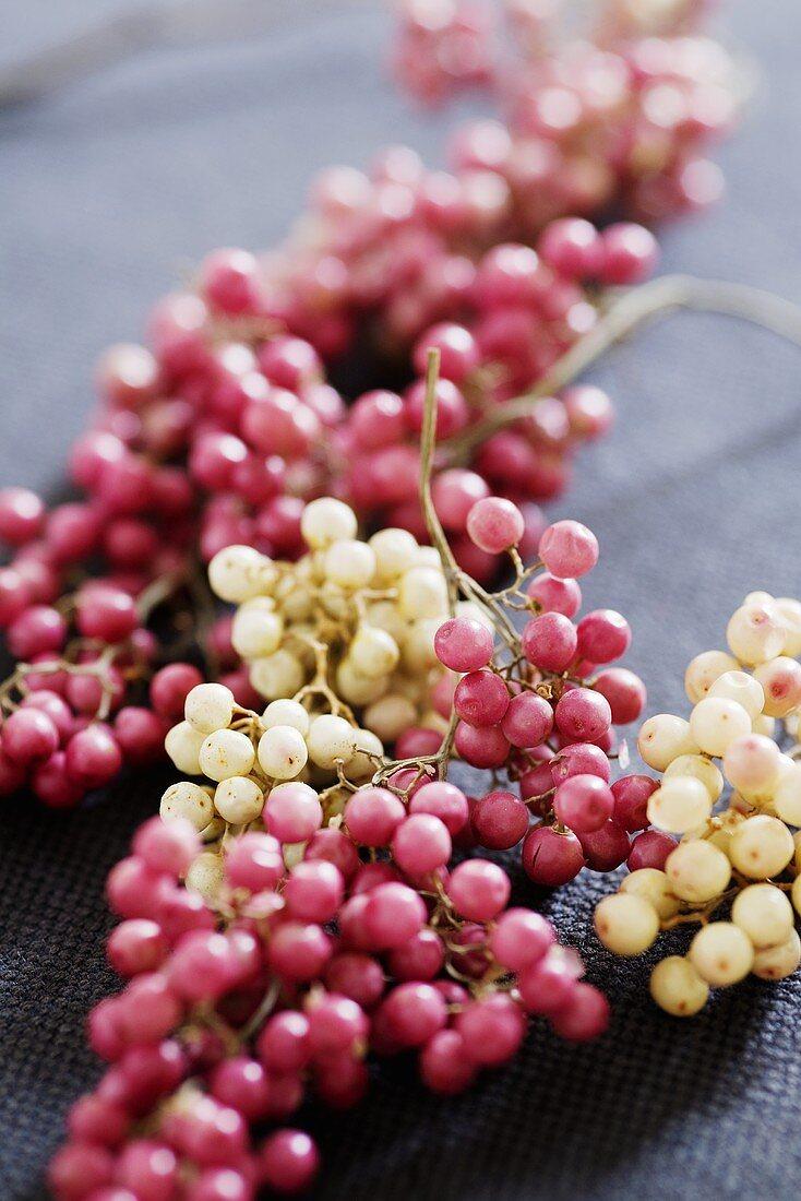 Bunches of fresh peppercorns