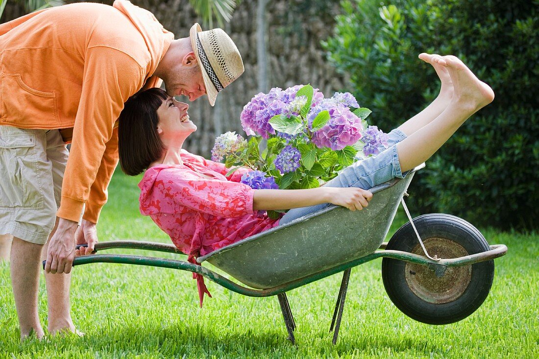 Man pushing woman with hydrangea in wheelbarrow