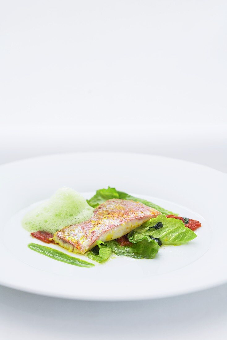 Sour marinated red mullet with fennel and milk foam