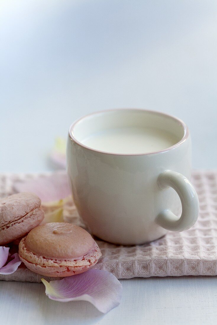 A cup of milk and rose-flavoured macaroons