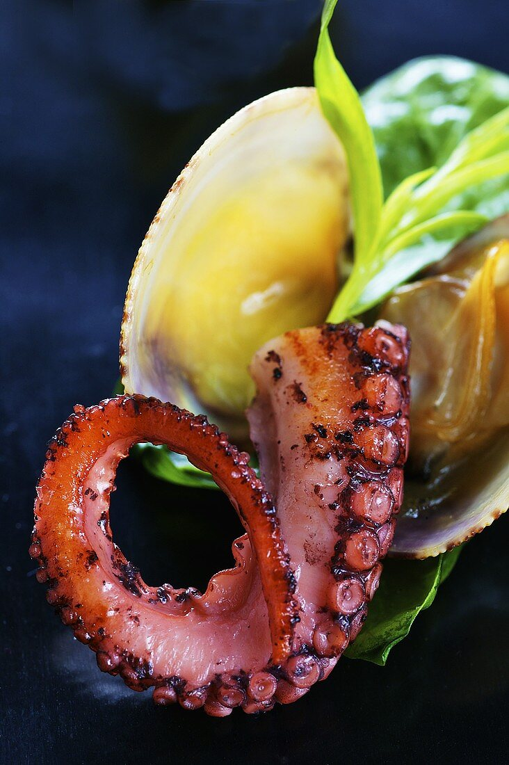 Fried octopus with Venus clams (close-up)