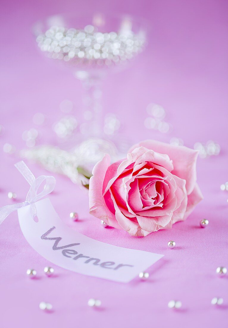 Table decoration for a place setting: label, pink rosebud, silver pearls