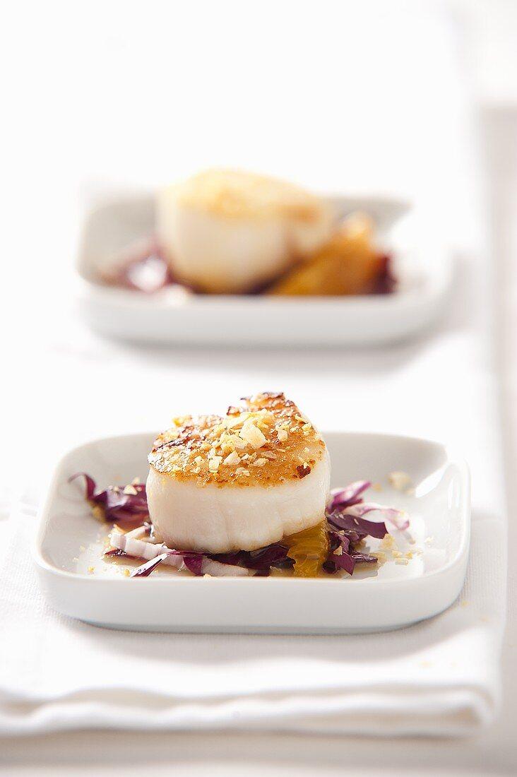 Scallops with fleur de sel