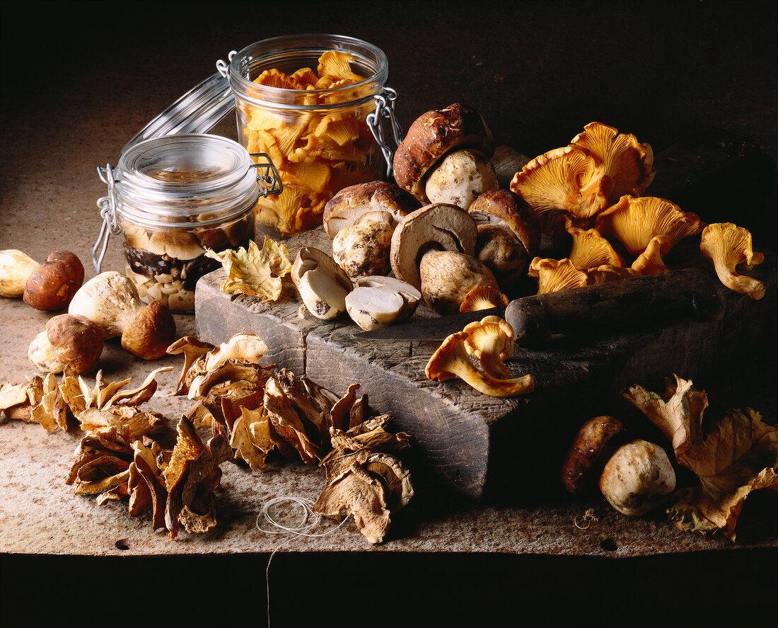 Selection of mushrooms