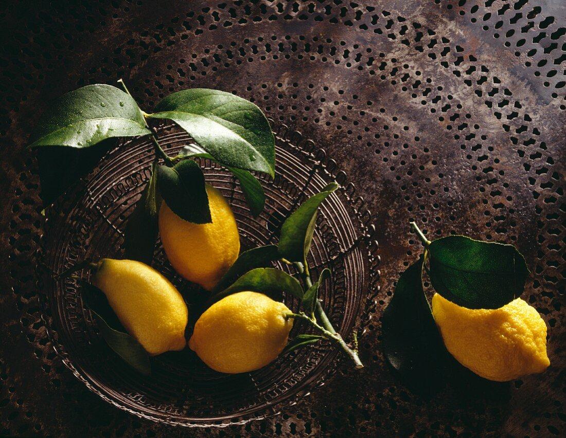Lemons from Menton