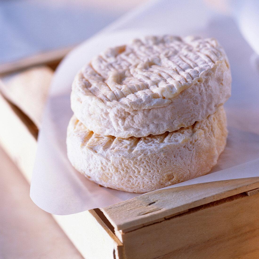 Saint-Félicien cheeses