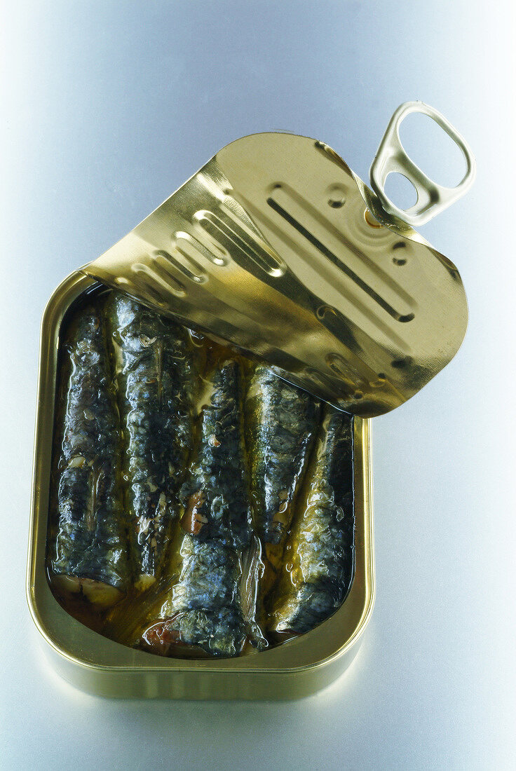 Opened tin of sardines